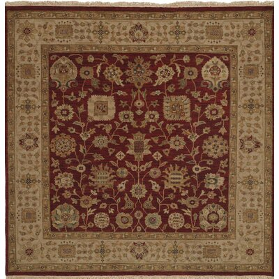 Hand-Knotted Red/Brown Area Rug