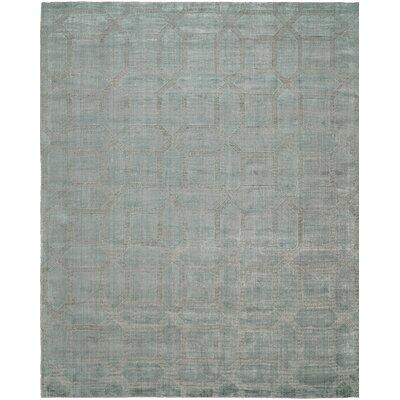 Handwoven Gray Area Rug Rug Size: 6 x 9