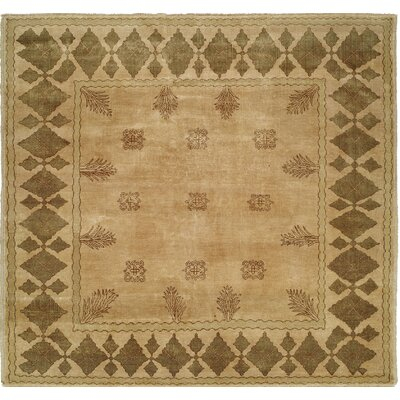Hand-Knotted Beige/Brown Area Rug Rug Size: 9 x 12