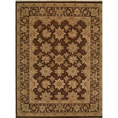 Hand-Woven Brown Area Rug Rug size: Rectangle 12 x 15
