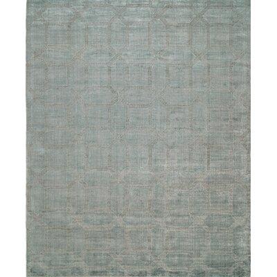 Handwoven Gray Area Rug Rug Size: 36 x 56