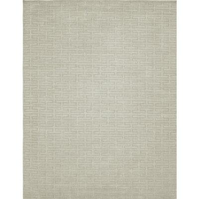 Hand-Woven Gray Area Rug Rug Size: 36 x 56