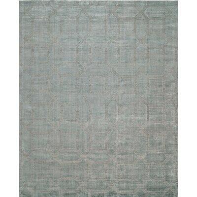 Handwoven Gray Area Rug Rug Size: 9 x 12