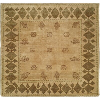Hand-Knotted Beige/Brown Area Rug Rug Size: 4 x 6