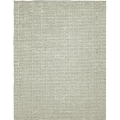Hand-Woven Gray Area Rug Rug Size: 5 x 7
