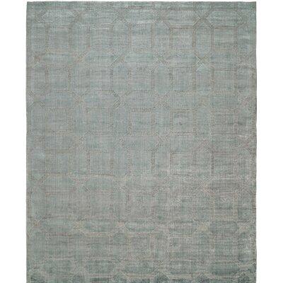 Handwoven Gray Area Rug Rug Size: 5 x 7