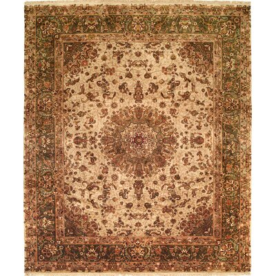 Hand-Knotted Brown Area Rug Rug size: 6 x 9