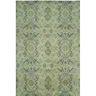 Hand-Woven Green Area Rug Rug size: 10 x 14