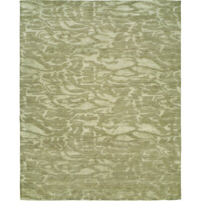 Hand-Woven Green Area Rug Rug size: 9 x 12