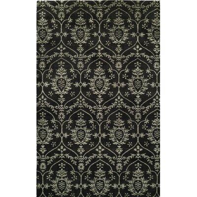 Hand-Woven Black Area Rug Rug size: 4 x 6