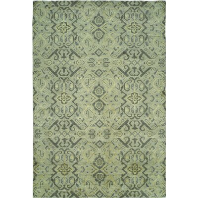 Hand-Woven Green Area Rug Rug size: 6 x 9