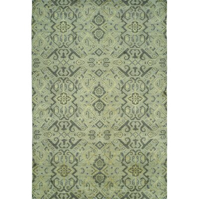 Hand-Woven Green Area Rug Rug size: 2' x 3'