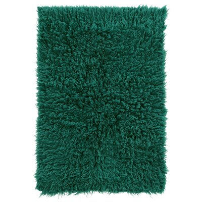Tyndalls Park Hand-Woven Green Area Rug Rug Size: Rectangle 24 x 48
