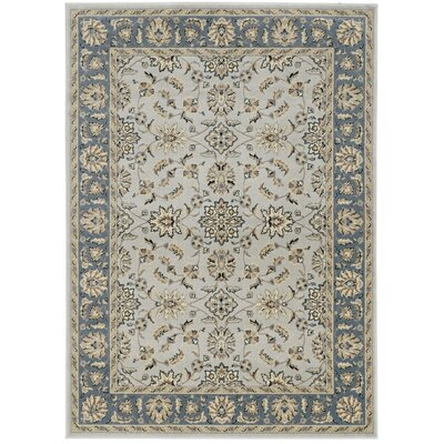 Softmint Green Area Rug Rug Size: 55 x 77