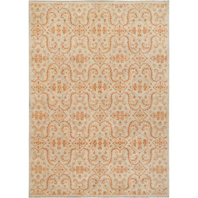 Hand-Knotted Orange/Beige Area Rug