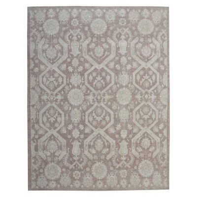 Hand-Knotted Light Gray/Brown Area Rug