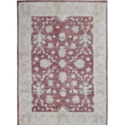 Hand-Knotted Red/Gray Area Rug