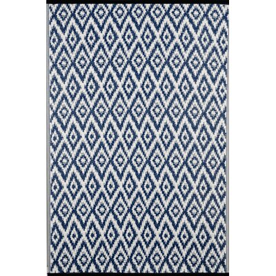 Lightweight Reversible Blue/White Indoor/Outdoor Area Rug Rug Size: 4 x 6