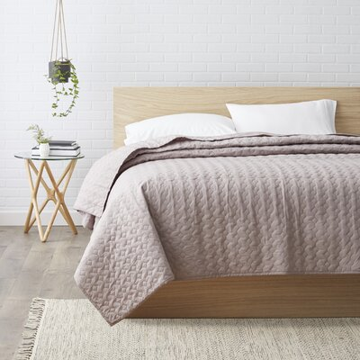 Quilt Size: Queen, Color: Light Gray