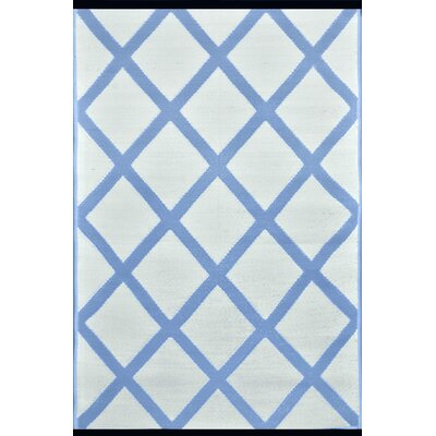Lightweight Reversible Powder/White Indoor/Outdoor Area Rug Rug Size: 3 x 5