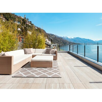 Lightweight Reversible Warm Taupe/Cream Indoor/Outdoor Area Rug Rug Size: 3 x 5
