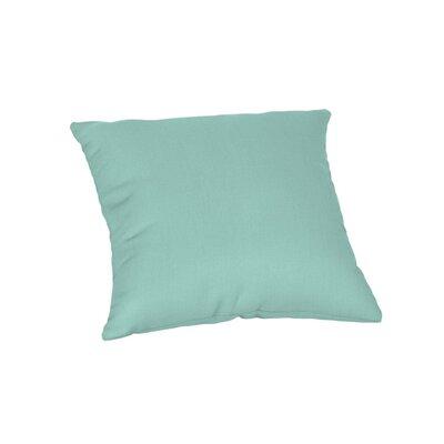 Outdoor Sunbrella Throw Pillow Color: Spectrum Mist