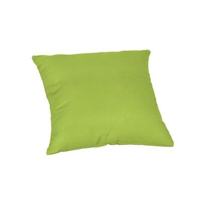 Outdoor Sunbrella Throw Pillow Color: Canvas Macaw