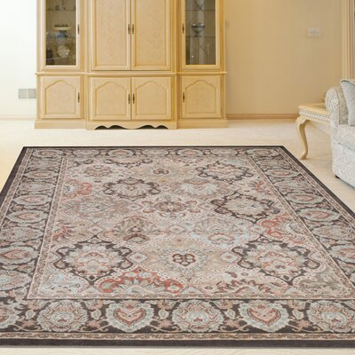 Garda Brown Area Rug Rug Size: Runner 2'2