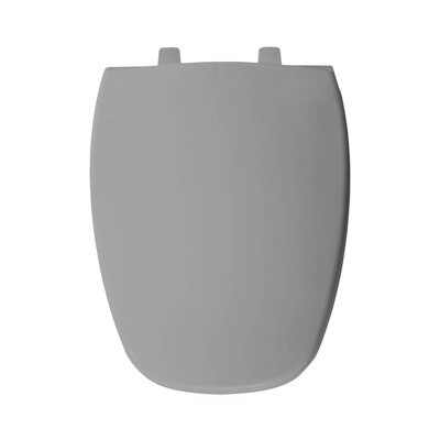 Plastic Elongated Toilet Seat Finish: Silver