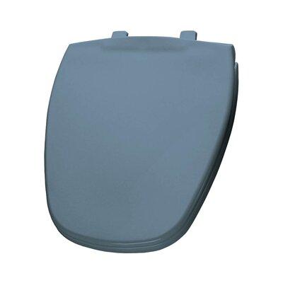Plastic Round Toilet Seat Finish: Glacier Blue