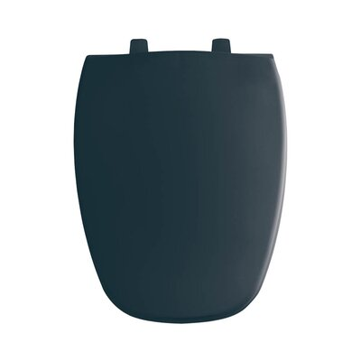Plastic Elongated Toilet Seat Finish: Verde Green