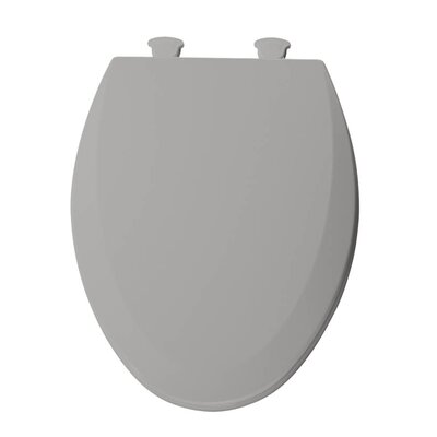 Lift-Off Wood Elongated Toilet Seat Finish: Silver