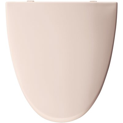 Elongated Toilet Seat Finish: Shell