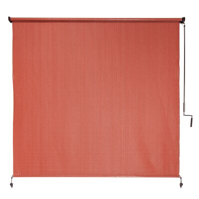 Terracotta Outdoor Roller Shade Size: 96 W x 72 L