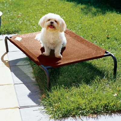 Elevated Indoor/Outdoor Pet Cot for Small Breeds Color: Terra Cotta