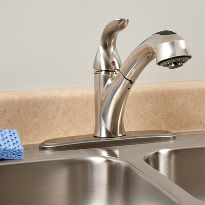 AquaLife Single Handle Pull-Out Kitchen Faucet with 2 Spray Settings Finish: Brushed Nickel