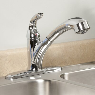 AquaLife Single Handle Pull-Out Kitchen Faucet with 2 Spray Settings Finish: Chrome