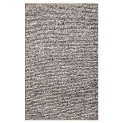 Jason Hand-Woven Grey Area Rug Rug Size: Rectangle 4 x 6