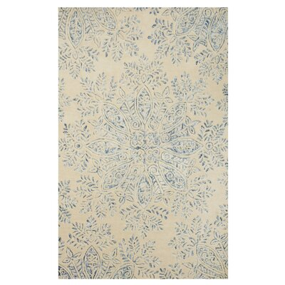 Parkey Hand-Woven Blue Area Rug Rug Size: Rectangle 4 x 6