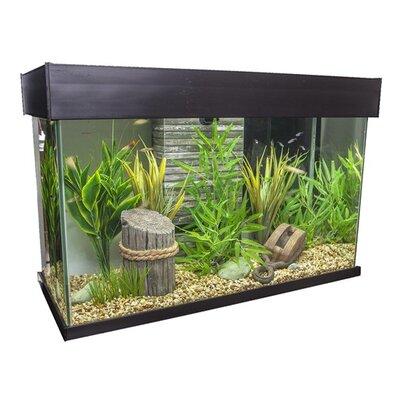 Fluval 25 Gallon Accent Aquarium