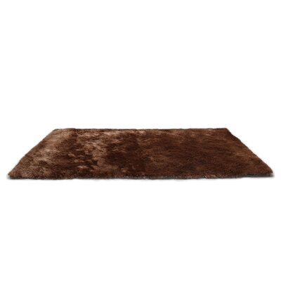 Coffee Area Rug Rug Size: 3 x 5