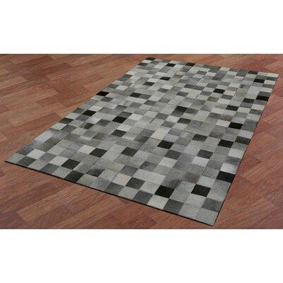 Matador Hand-Woven Gray/Black Area Rug Rug Size: 4 x 6