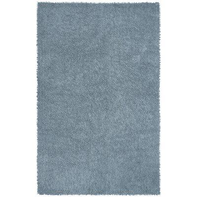 Shagadelic Gray Rug Rug Size: 26 x 42