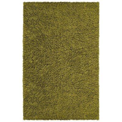 Shagadelic Moss Area Rug Rug Size: 4 x 6