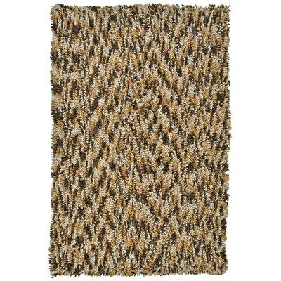 Shagadelic Brown Twist Swirl Rug Rug Size: Rectangle 4 x 6