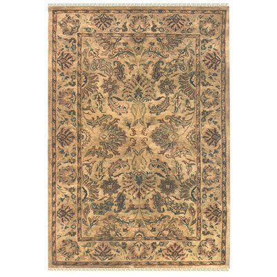 Agra Hand-Tufted Area Rug Rug Size: Rectangle 76 x 96