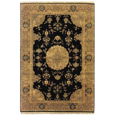 Alpha Rectangle Hand-Tufted Black Area Rug Rug Size: 5'6