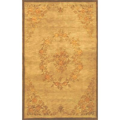 Neo Nepal Aubusson Flowers Gold Area Rug Rug Size: Rectangle 5 x 8
