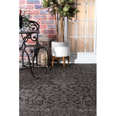 Black/Gray Indoor/Outdoor Area Rug Rug Size: 53 x 76