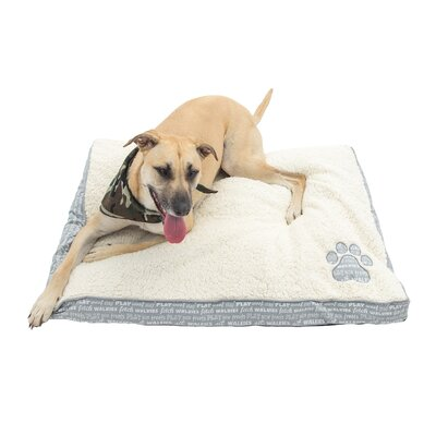 Chico Pet Mattress Color: Gray